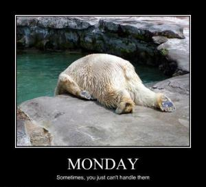Monday Polar Bear